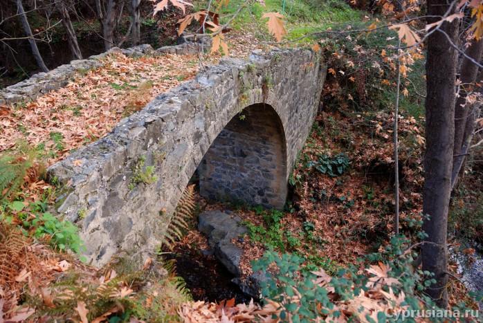 Первый мостик