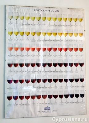 Цвет и аромат вин