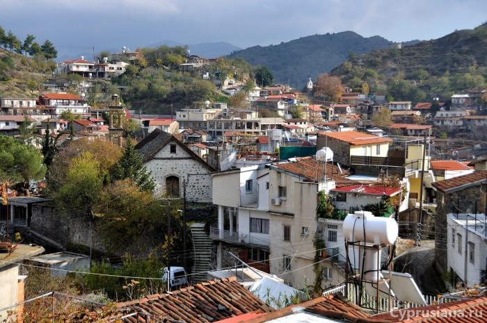 Вид на деревню с запада