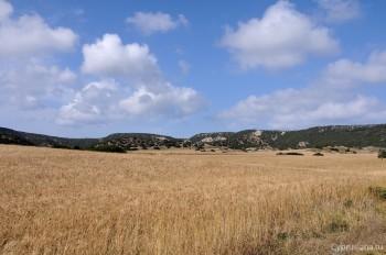 Равнина Карпасии