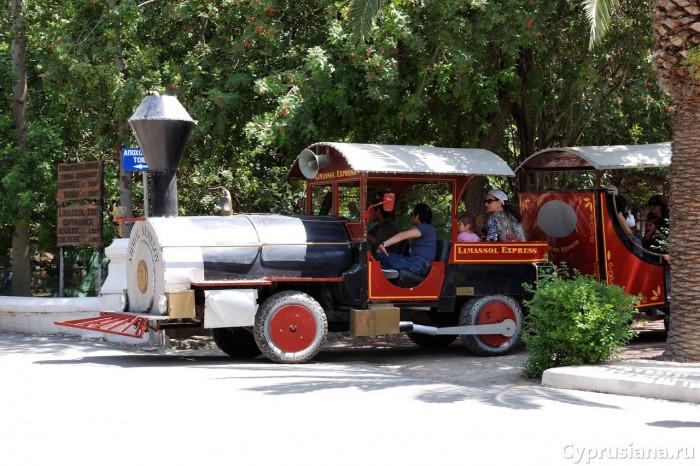 Поезд в муниципальном парке