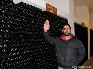 В подвалах винодельни Vouni Panayia