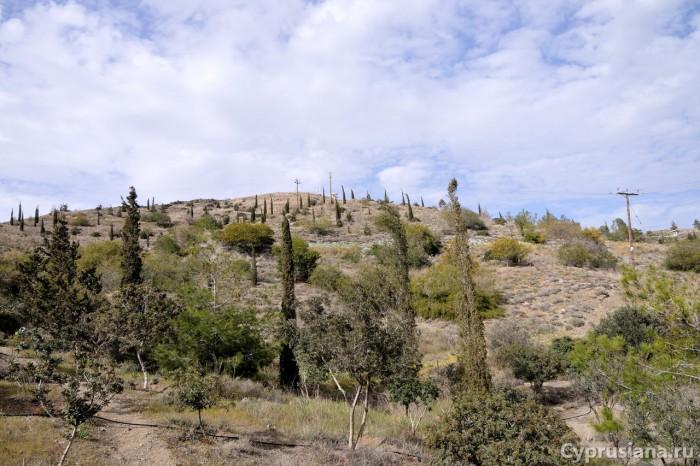 Вид на Мавровуни