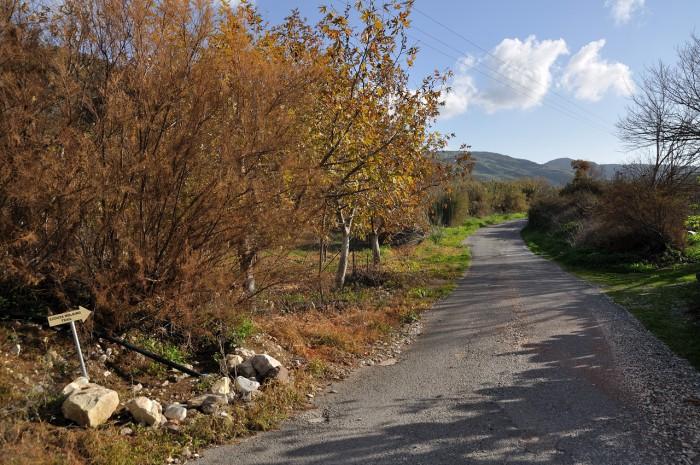 Перед поворотом к деревне