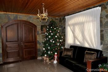 Рождественский наряд