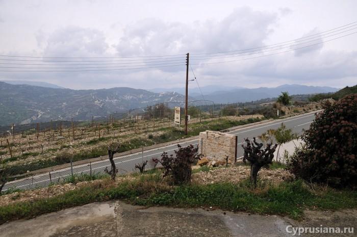 Вид с винодельни Nelion