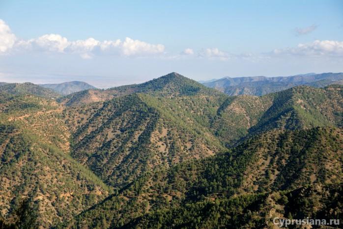 В горах Троодоса по дороге к заповеднику муфлонов